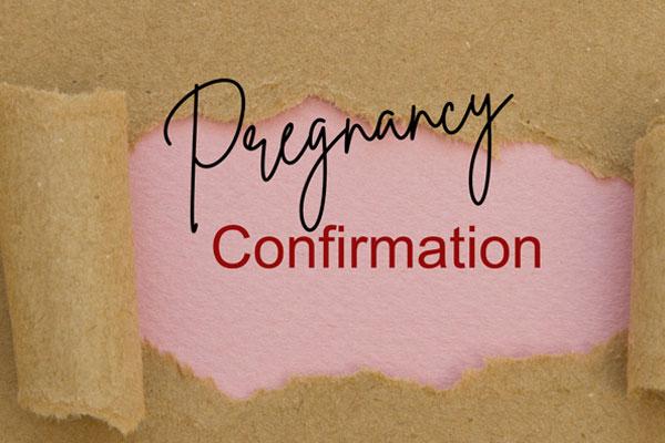 Pregnancy Confirmation